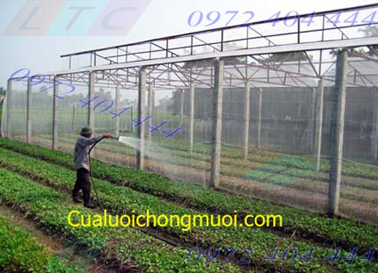 cua_luoi_chong_muoi_cho_nong_nghiep_1