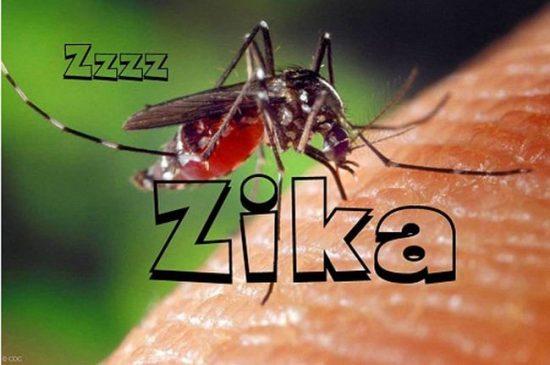 -zika